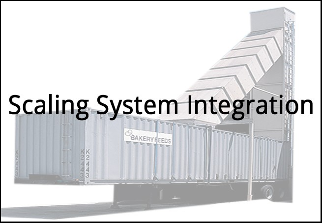 Scaling System Integration